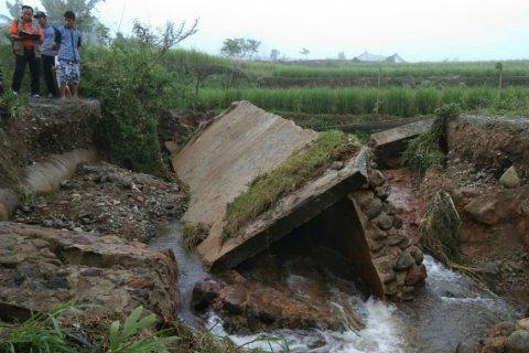 Diterjang banjir, 4,25 hektare padi di Solok Selatan terancam puso