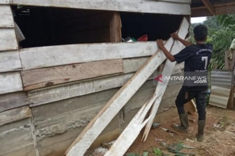 Gangguan gajah di Nagan Raya Aceh belum berakhir
