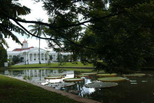 Pengunjung Kebun Raya Bogor tembus 23.466 orang
