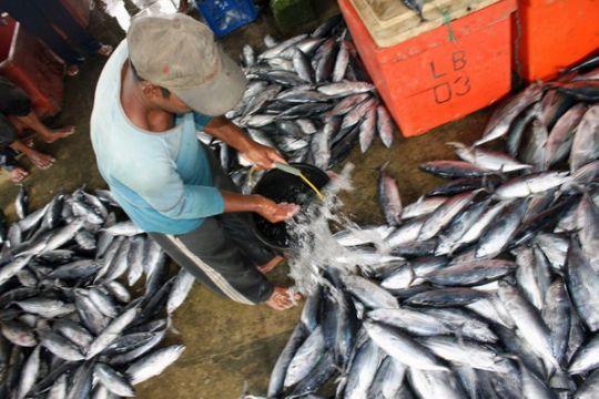 Teguh kesehariannya berjualan ikan dan gorengan di Surabaya
