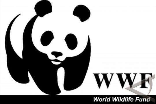 Kementerian Kehutanan akan evaluasi kinerja WWF
