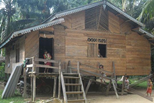 Menyibak tabir gawai gedang suku Talang Mamak (bagian 1)