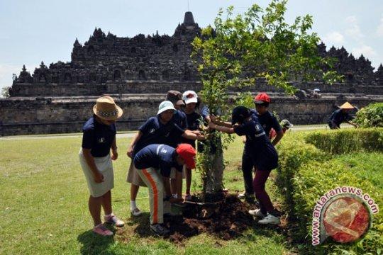 Lereng Gunung Merapi ditanami pohon pelaku jasa perhotelan