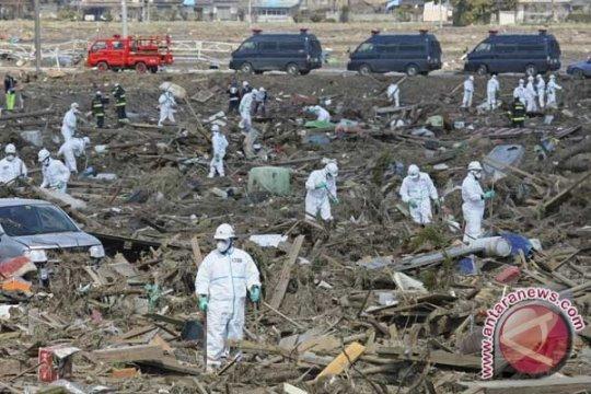 Bencana Fukushima dijamin tidak terulang dengan aturan keselamatan nuklir