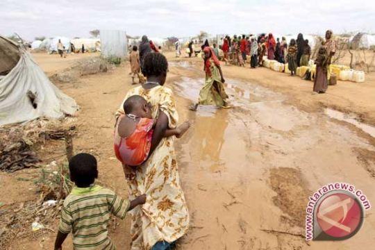 Bom pinggir jalan tewaskan sejumlah polisi Kenya