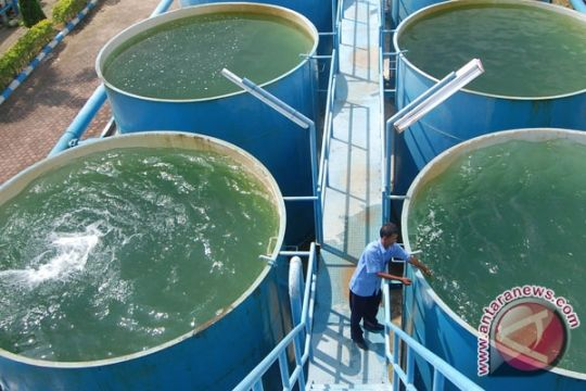 Jakarta Tidak Punya Ketahanan Air
