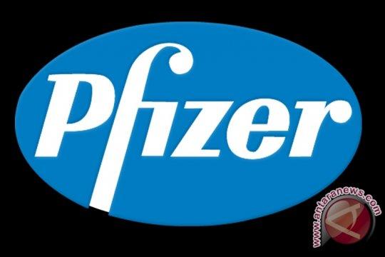 Pfizer Serahkan Kesimpulan Keterangan Tambahan ke Pengadilan
