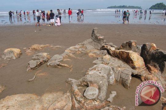 Pengingat legenda Malin Kundang di Pantai Air Manis