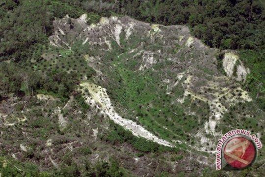 Laju Kerusakan Hutan Capai 0,7 Juta Hektar