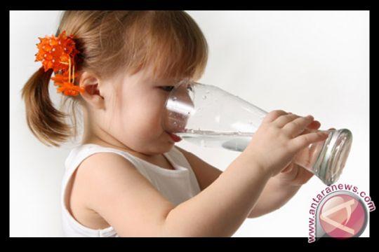 Surabaya miliki sembilan kran air siap minum