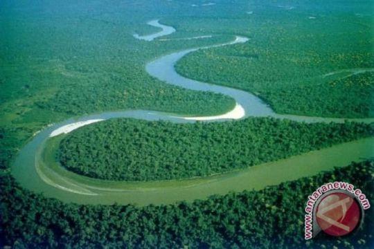 Kawasan Hutan Dapat Memperkuat Ketahanan Pangan Kalbar