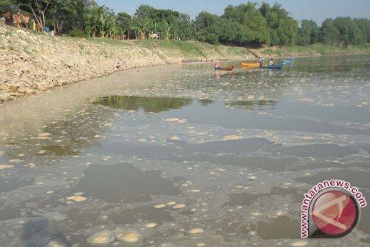 Air Bengawan Solo Berbuih Kerena Pencemaran
