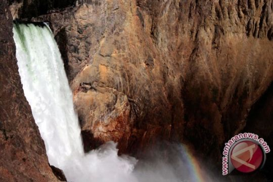 Virus jangkiti 200 orang di Yellowstone dan Grand Teton