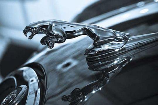 Jaguar punya galeri baru di Kedoya