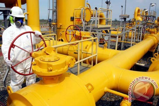 Ahli perminyakan cari strategi pengembangan gas Natuna