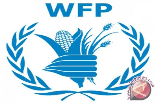 PBB sediakan bantuan makanan 4,1 juta orang di Zimbabwe
