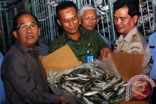 Tidak ditemukan penggunaan formalin di Pasar Ikan Rejomulyo Semarang