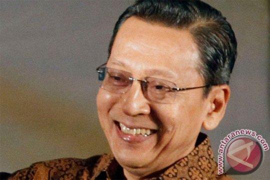 Wakil Presiden Boediono tanam Ulin di Palangkaraya