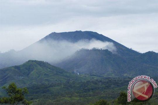 Gempa tremor Gunung Ijen masih fluktuatif