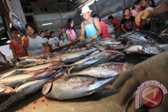 Ekspor ikan cakalang NTT terbanyak ke Jepang