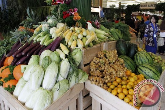 Legislator dorong Kalbar basis kedaulatan pangan Indonesia