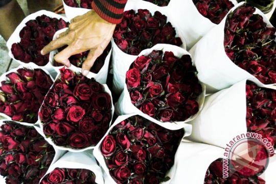 Jelang Valentine, harga mawar membubung di China