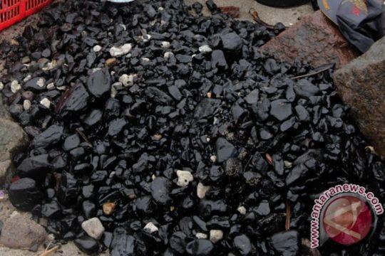 Polandia resmikan pembangkit listrik tenaga batu bara terbesar di Eropa