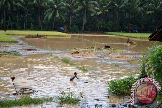 Sungai meluap, ratusan rumah di Pesawaran-Lampung terendam banjir