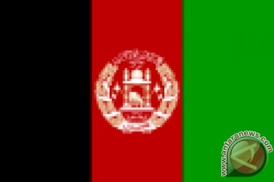 Pejabat senior PBB bertemu perunding Taliban di Qatar
