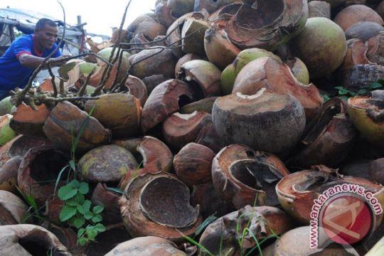 Sulut ekspor sabut kelapa ke Tiongkok