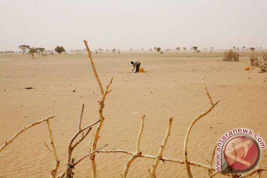 Antonio Guterres: Kelaparan makin banyak dipicu konflik