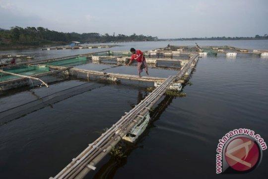 BPPT terapkan konsep pengelolaan pesisir Sato Umi