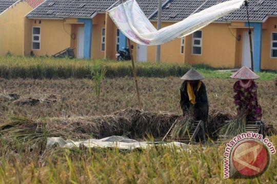 Pemberian insentif petani Malang terhambat payung hukum