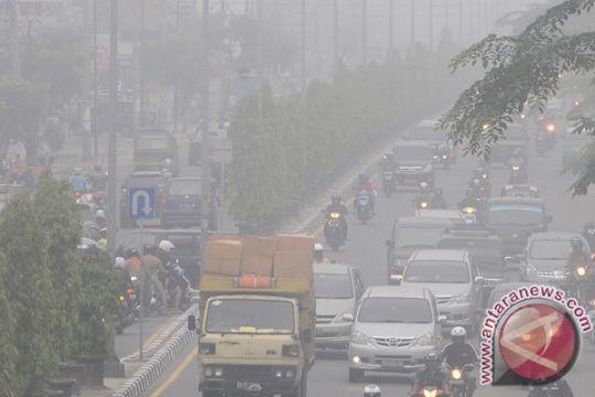 Riau butuh perda larangan bakar lahan
