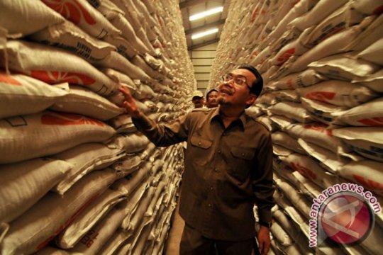 Mentan : target produksi padi belum akan direvisi