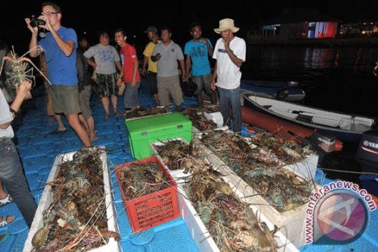 Komisi IV DPR dukung Malut jadi lumbung ikan nasional