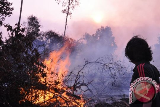 Warga sampit mulai gunakan masker hindari asap