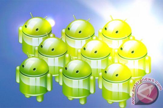 Banyuwangi promosikan wisata melalui aplikasi android
