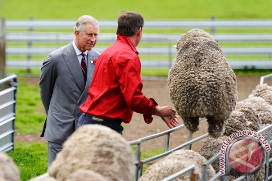 Pangeran Charles rayakan ulang tahun ke-70