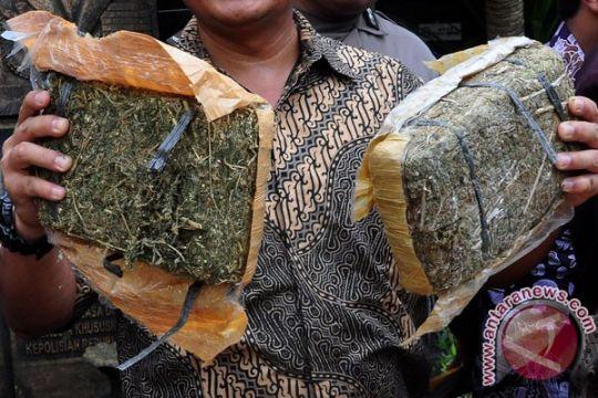 Polisi Langkat ringkus pembawa 20 kilogram ganja