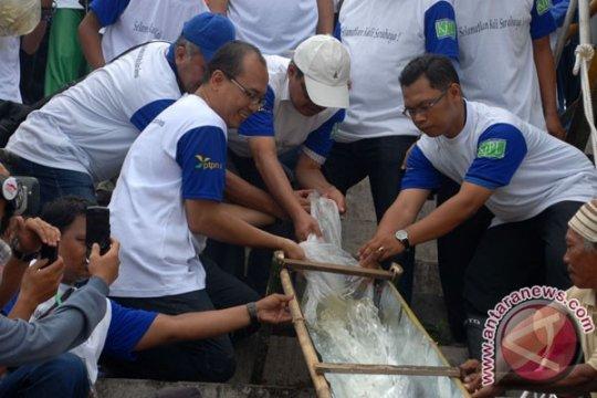 40.000 benih ikan ditebar di Kali Surabaya