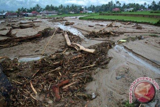 Tujuh Nagari tolak perambahan hutan di Solok Selatan