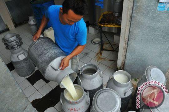 Kementan dorong produksi susu segar nonsapi