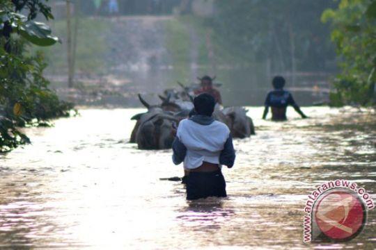 Banjir di Bandarlampung merusak rumah dan sekolah