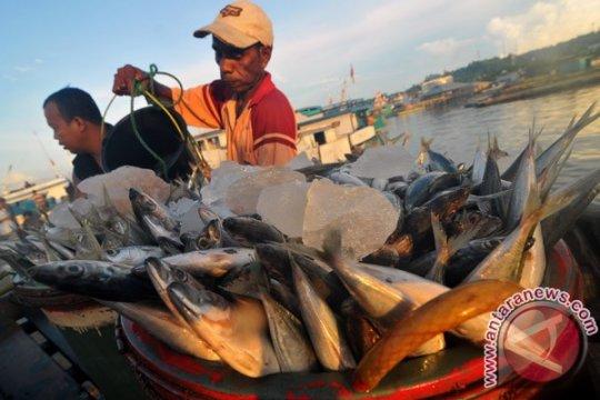 Basarnas temukan ABK nelayan hilang di Sorong Selatan dalam kondisi meninggal