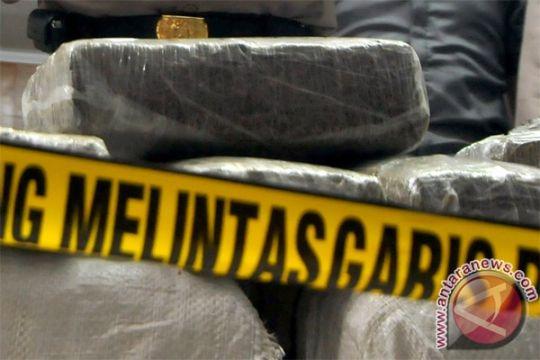 Polres Jembrana gagalkan penyelundupan 100 kg ganja