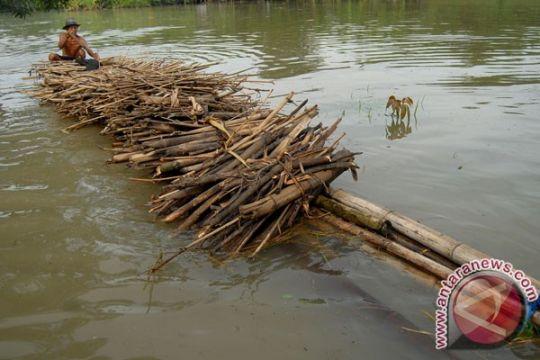 Banjir di OKU Timur rendam persawahan warga