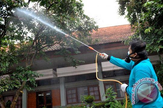 Ulat bulu resahkan warga Surabaya