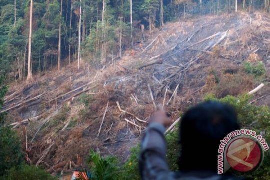 Penyidik Polres Kuantan Singingi tangkap pemodal perambah hutan