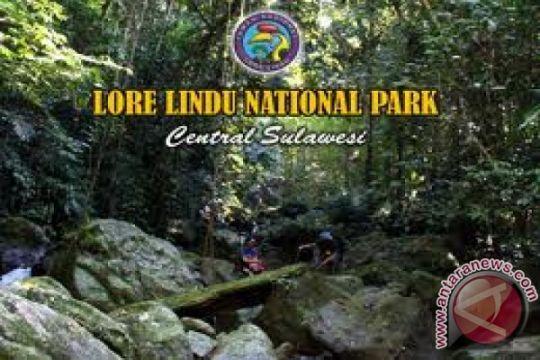 Taman Nasional Lore Lindu imbau masyarakat tidak buka kebun baru